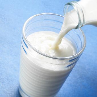 cálcio leite