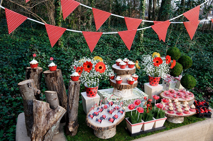 decoração festa joaninha