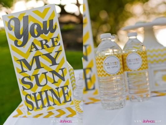 you are my sunshine festa 2