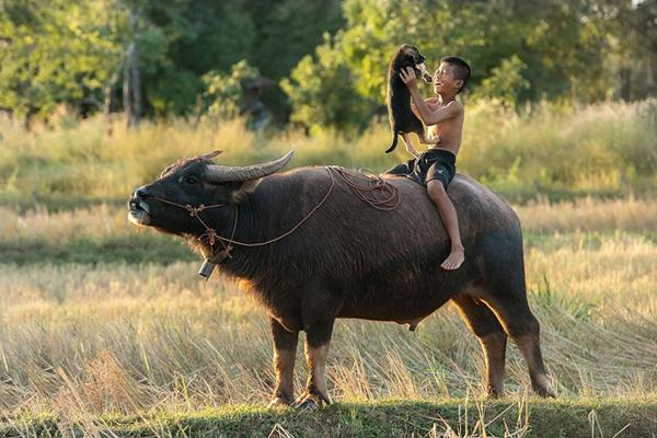 Tailândia http://500px.com/photo/52161868/smile-by-sarawut-intarob (Sarawut Intarob)