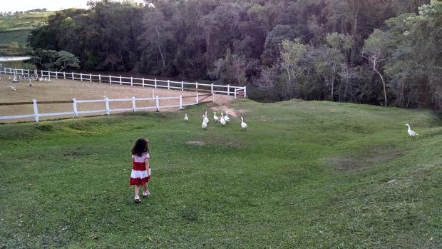 Passeando pela fazenda