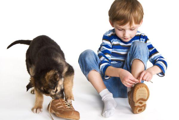 Criança tem chulé? 6 dicas para lidar com o problema!