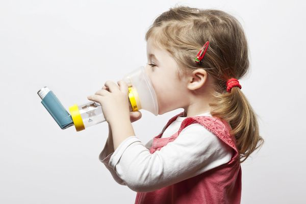 Bactérias intestinais reduzem risco de asma em bebês