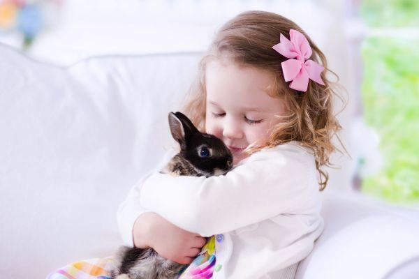 5 pets para conviver com o seu filho