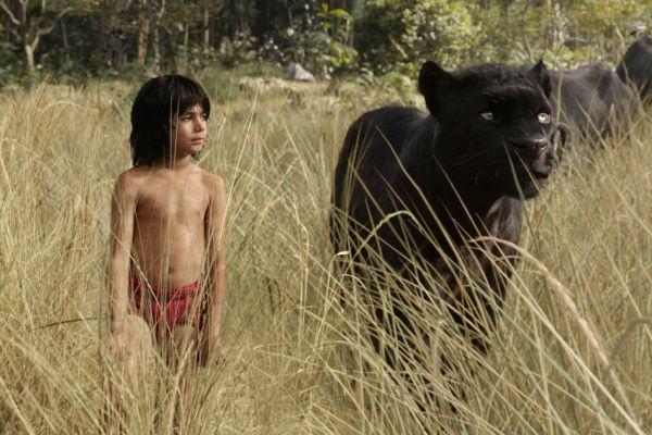 Mogli, o Menino Lobo: eu assisti e conto tudo sobre o filme!