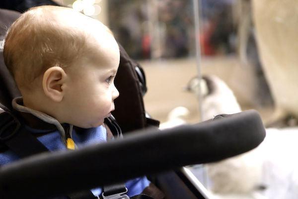 """8 museus """"baby-friendly"""": para um passeio em família!"""