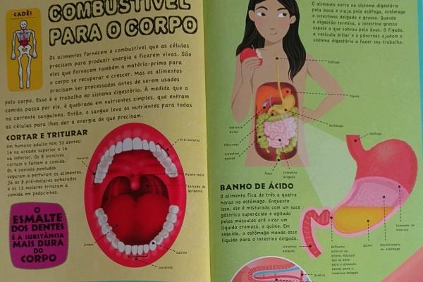 Livro para seu filho aprender sobre o Corpo Humano!