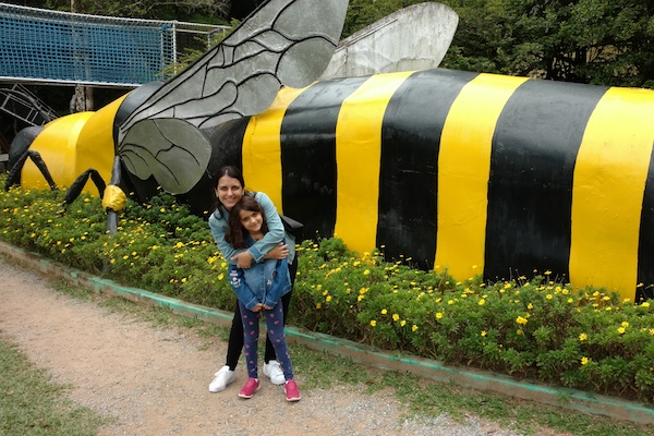 Cidade das Abelhas: um passeio para seu filho aprender e se divertir!
