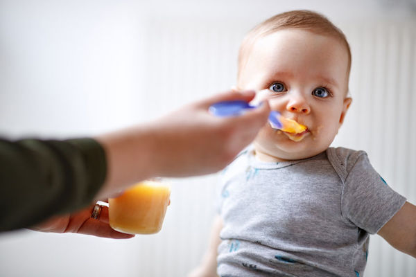 O que servir ao bebê entre os 6 meses e 1 ano