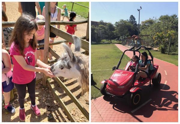 Viagem com crianças em São Paulo: hotéis incríveis por até R$600,00!
