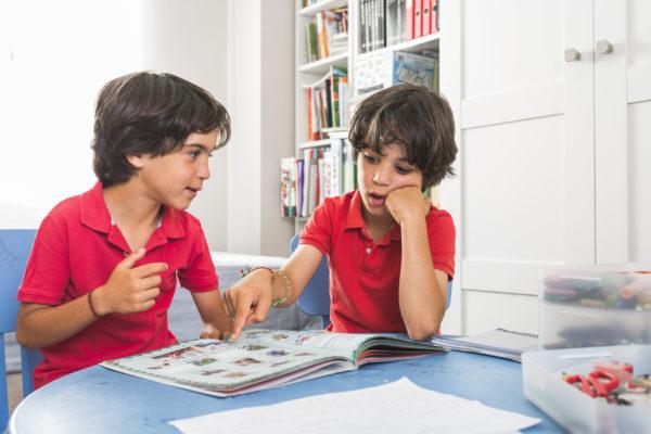 filhos gêmeos estudando